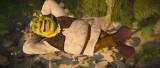 Shrek Forever After, property of Dreamworks Animation LLC